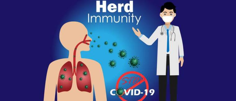 herd immunity di indonesia